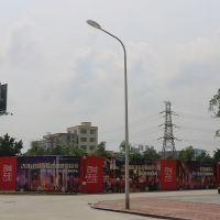 工厂直供6米路灯杆 单臂LED广场路灯灯杆