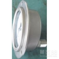 YTH-100,厂家直销北京布莱迪BLD不锈钢防腐耐震压力表现货