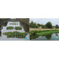 景观水处理技术所重视的是什么