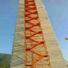 Y供应陕西西安安全爬梯 河北通达安全爬梯生产厂家 室外安全爬梯