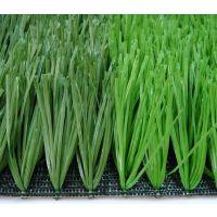 仿真草坪塑料人造假草皮,人工室内绿植装饰足球场户外双拼色