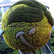 景区雕塑造型 异性雕塑造型 立体绿雕造型