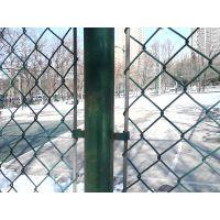 环航绿色勾花网 球场围栏 隔离网 环航网业