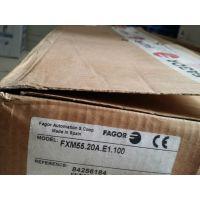 FAGOR发格电机FXM55.40A.E1.100