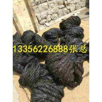 http://himg.china.cn/1/4_770_237964_600_800.jpg