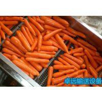 宁津卓远定制304不锈钢蔬菜清洗机 土豆清洗 网带清洗机