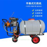 汽油打药机 LQ_300升水稻喷药机 果园喷雾器厂家