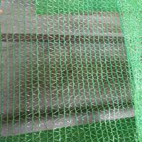 聊城批发绿色盖土网 环保防尘盖土网 工程绿化防风网 盖土网厂家