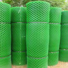 塑料平网厂 笼底塑料平网 中国特种养殖网