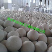 萍乡厂家生产价格优惠的中铝惰性瓷球