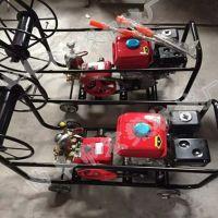 框架式打药喷雾器 梨树管理汽油高压喷雾器
