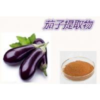 食品级抗氧化剂茄子提取物 河北石家庄丰味