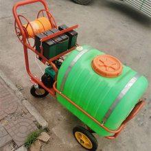 风送式果园喷雾器 启航苹果树打药机价格 喷药机哪里有卖