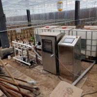 霖丰灌溉施肥机 樱桃西红柿施肥器LF系列全自动智能水肥一体化