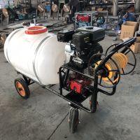 喷雾器使用方法 水稻打药机 道路两旁手推喷雾器报价