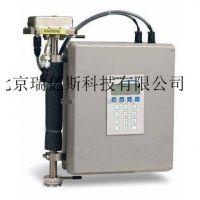 生产厂家便携式热导型氢气纯度仪RYS-LDH2型 厂家直销