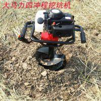硬土挖树坑机 地面打眼机厂家 种果树挖坑机操作视频