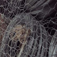 铅丝笼护角 镀锌石笼网 石笼网图片