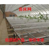 沈阳双粱型苗床 标准1.7米宽度 移动苗床