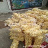 自熟型玉米大米膨化机 多功能杂粮膨化机 休闲谷物膨化机厂家热销