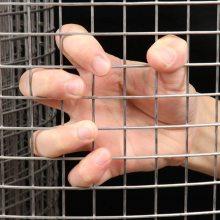 不锈钢电焊网 通道围栏网 抹墙吊顶电焊网铁丝网