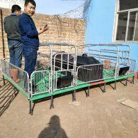 养猪产保一体式产床式 双体母猪产床 厂家销售定制