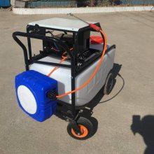 新品直销手推式果树喷雾器电动消毒喷药机150L农用杀虫机