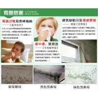 腻子粉专用防霉剂iHeir-TQ_艾浩尔中国总经销商