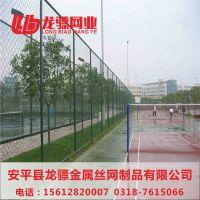 园林绿化养护网 安装隔离网 监狱围墙护栏