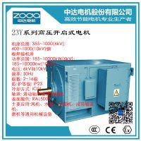 zoda品牌铸铁高压电动机Y2-HV 355-6-200KW 6KV中达电机