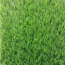 假草坪出售 室外假草坪 幼儿园地毯草皮