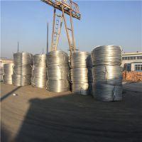 上海征帆品牌制造厂家批发架空线 JL/GIA/150/25钢芯铝绞线现货供应 价格优惠