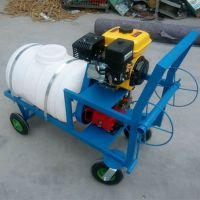 园林树木打药机 汽油喷雾机 手推式动力喷雾器 乐丰机械