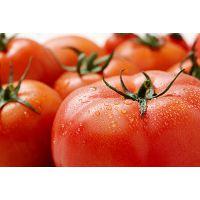 西红柿生理性病害,辽宁恒辉新能源提示有三种