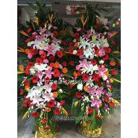 宾阳县鲜花批发宾阳县花卉15296564995宾阳县哪有鲜切花销售推荐尤加利
