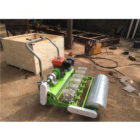 电动精量穴播机 电动苔菜播种机