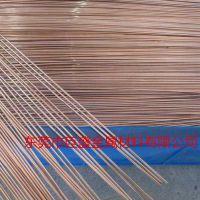 东莞巨盛专业生产8.0mm-9.0mm-10.0mm磷铜棒 厂家直销