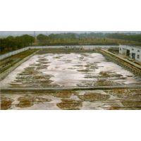 河南食品废水处理