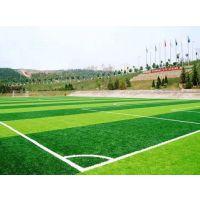 石家庄供应人造草坪 足球场地面铺设