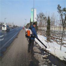 工程加班用背负式吹雪机 加纯汽油的吹雪机润众
