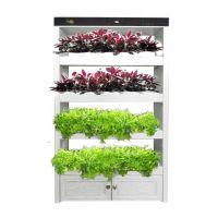 教学科研器材全智能生态种植室内空气净化器