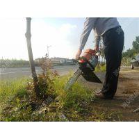 低耗又节能汽油挖树机 提高成活率铲树机 完整不伤根刨树机
