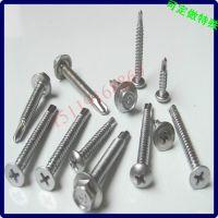 正宗304不锈钢自钻尾螺丝钉批发 生产定做加工 中山螺钉厂