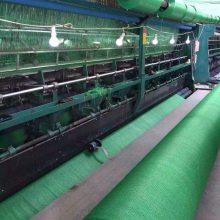 天津盖土网供应商 绿色防尘网 塑料防风抑尘网