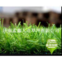 幼儿园仿真草坪户外地毯人造草皮塑料假草坪阳台人工草垫绿植装饰