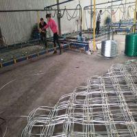 山东sns边坡防护网山体护坡 高速护坡施工实拍 工厂直销