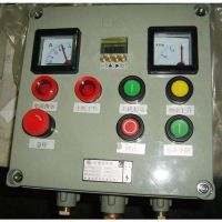 制作加工按键温度显示防爆数字仪表箱