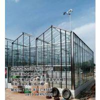 云南温室大棚施工、云南温室大棚、光明温室大棚(在线咨询)
