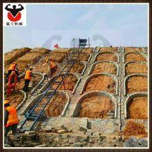 供应猛士 砂浆吊运机 建筑工程用爬山虎上料机械 水泥石块边坡斜坡送料专用