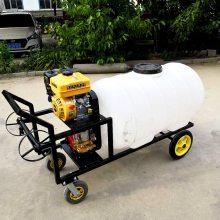 厂家直销手推式喷药车 农用喷雾器 高压拉管打药机